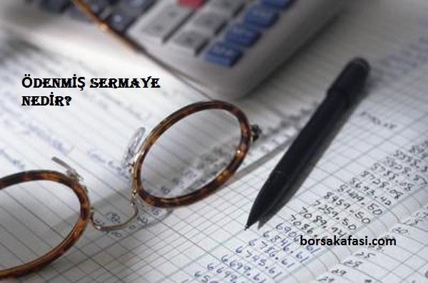 Borsadaki şirketler için Ödenmiş Sermaye nedir?