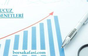 Borsa Yatırımcısına Notlar: 1- Fiyat/Kazanç Oranı F/K