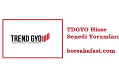 Trend GYO Hisse Senedi Yorumları | TDGYO